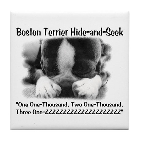 Boston Hide and Seek Tile Coaster
