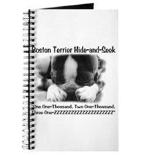 Boston Hide and Seek Journal
