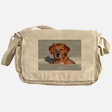 Golden Retriever 2 Messenger Bag