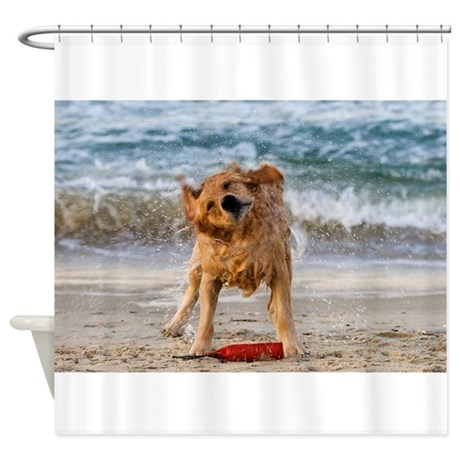Golden Retriever 4 Shower Curtain