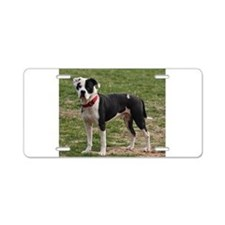 Bully Dogs 2 Aluminum License Plate