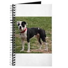 Bully Dogs 2 Journal