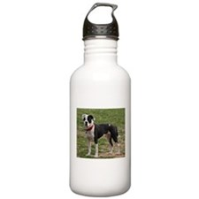Bully Dogs 2 Water Bottle