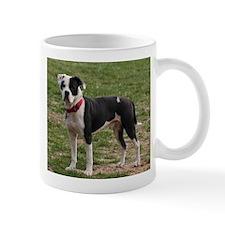 Bully Dogs 2 Mug