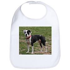 Bully Dogs 2 Bib