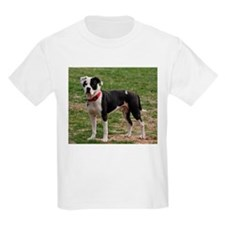 Bully Dogs 2 T-Shirt