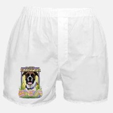 Easter Egg Cookies - Boxer Boxer Shorts