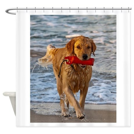 Golden Retriever 6 Shower Curtain