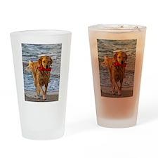Golden Retriever 6 Drinking Glass