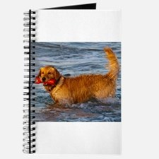 Golden Retriever 5 Journal