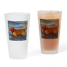 Golden Retriever 5 Drinking Glass