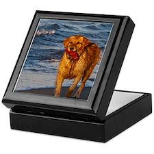 Golden Retriever 7 Keepsake Box