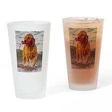 Golden Retriever 9 Drinking Glass