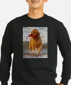 Golden Retriever 9 T