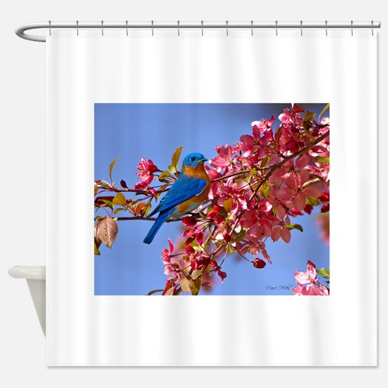 Bluebird in Blossoms Shower Curtain