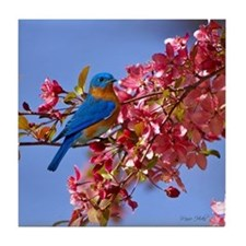 Bluebird in Blossoms Tile Coaster