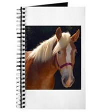 Sunlit Horse Journal
