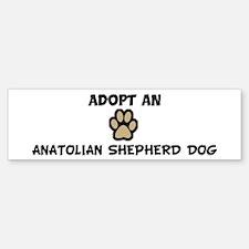 Adopt an ANATOLIAN SHEPHERD D Bumper Bumper Bumper Sticker