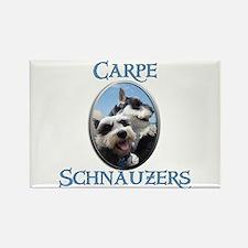 Carpe Schnauzers Rectangle Magnet