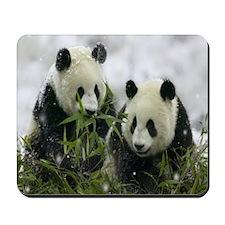 Mousepad Snow Panda
