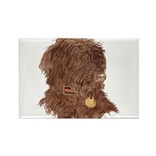 Chocolate Labradoodle Xena Rectangle Magnet