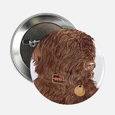 "Chocolate Labradoodle Xena 2.25"" Button"