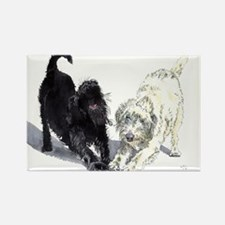 Stretching Labradoodles Rectangle Magnet