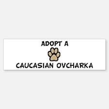 Adopt a CAUCASIAN OVCHARKA Bumper Bumper Bumper Sticker