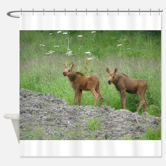 Twin Calves #01 Shower Curtain