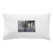 Bull Moose #05 Pillow Case