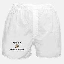 Adopt a LHASA APSO Boxer Shorts