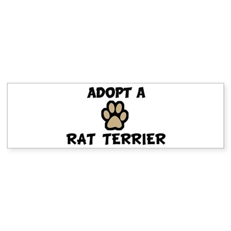 Adopt a RAT TERRIER Bumper Sticker