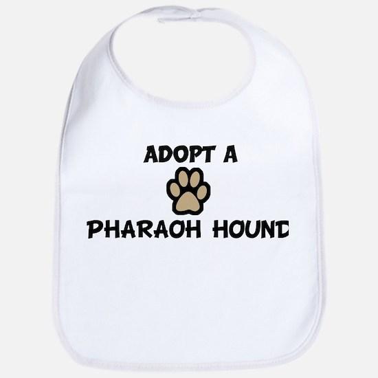 Adopt a PHARAOH HOUND Bib