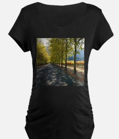 Turning Leaves Wine Country T-Shirt