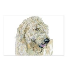 Cream Labradoodle #3 Postcards (Package of 8)