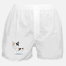 Japanese Bobtail Caricature Boxer Shorts