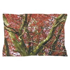 Red Tree Pillow Case