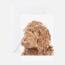Chocolate Labradoodle 5 Greeting Card