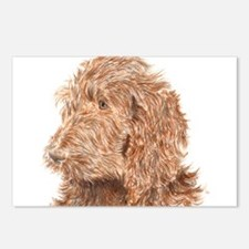 Chocolate Labradoodle 5 Postcards (Package of 8)