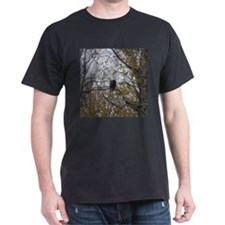 Bald Eagle #01 T-Shirt