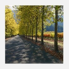 Napa Valley California Wine Country Tile Coasters