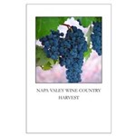 """""""NAPA VALLEY WINE COUNTRY HARVEST"""" Large"""