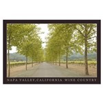 napa valley vineyard road Large Poster