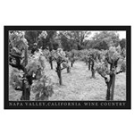 wine country 2005 black white Large Poster