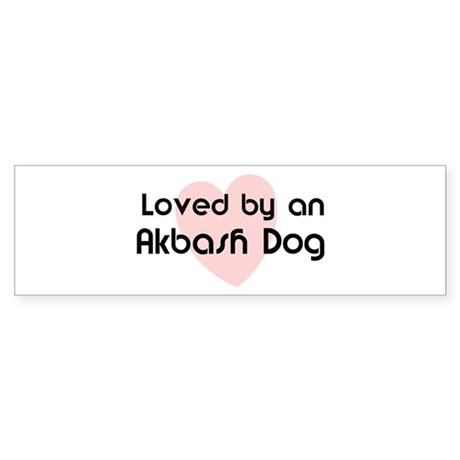 Loved by an Akbash Dog Bumper Sticker