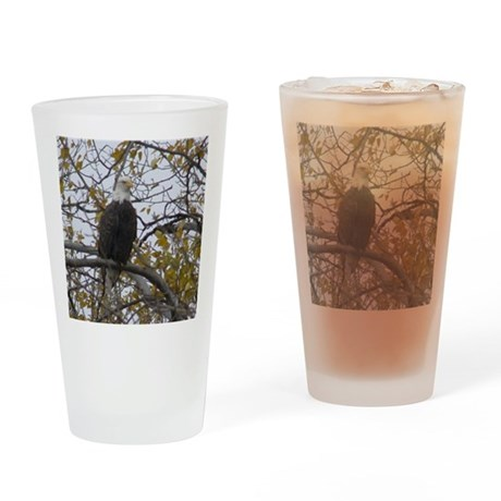 Bald Eagle #01 Drinking Glass
