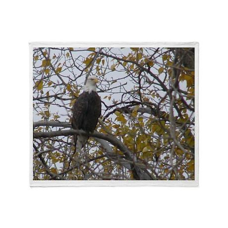 Bald Eagle #01 Throw Blanket