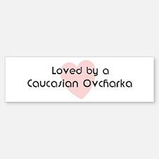 Loved by a Caucasian Ovcharka Bumper Bumper Bumper Sticker