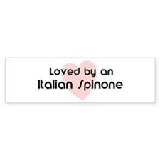 Loved by a Italian Spinone Bumper Bumper Sticker