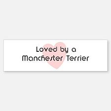 Loved by a Manchester Terrier Bumper Bumper Bumper Sticker